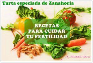 Recetas Fértiles: Tarta especiada de Zanahoria